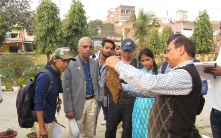 SEES Field Trip to Noorsarai and Harnaut: Learning about Agroecosystem Management